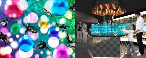 すみだ水族館 開業3周年記念リニューアル