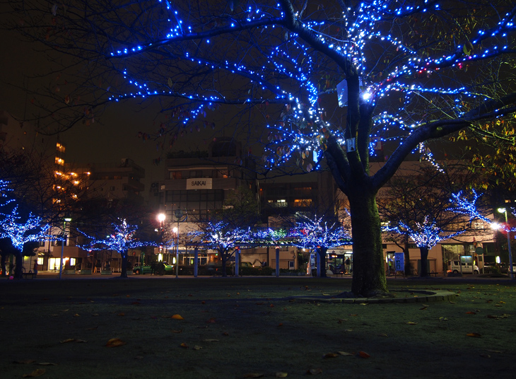 緑町公園 ライトアップ