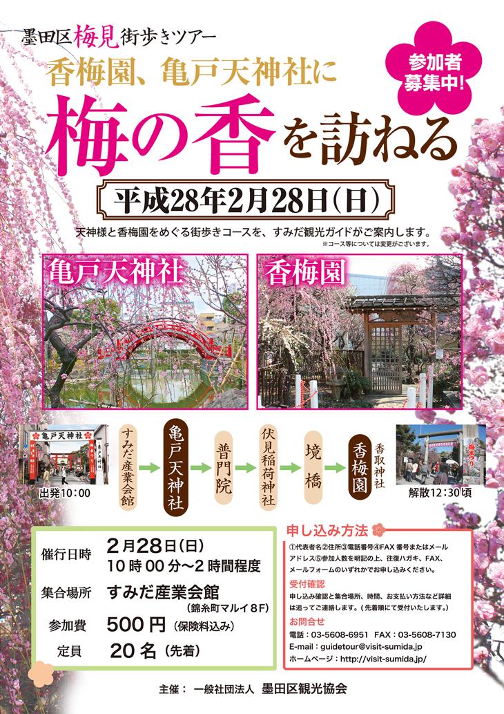 墨田区梅見街歩きツアー